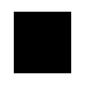 TelmoMiel